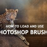 How to Load and Use Photoshop Brushes